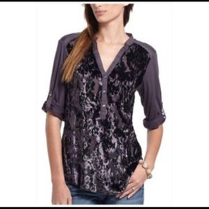 Anthropologie Tiny velvet silk burnout top